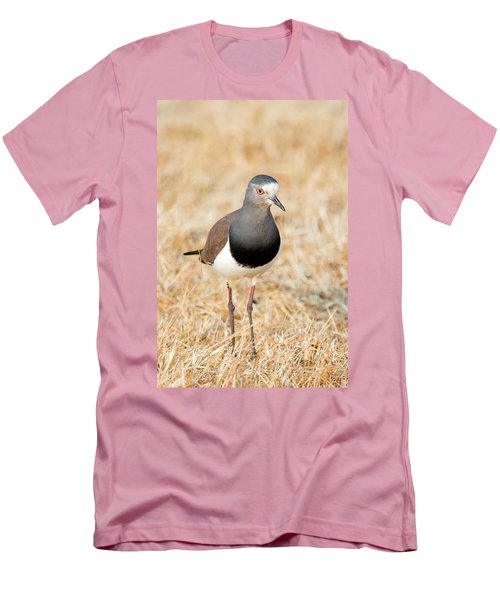 African Wattled Lapwing Vanellus Men's T-Shirt (Slim Fit) by Panoramic Images
