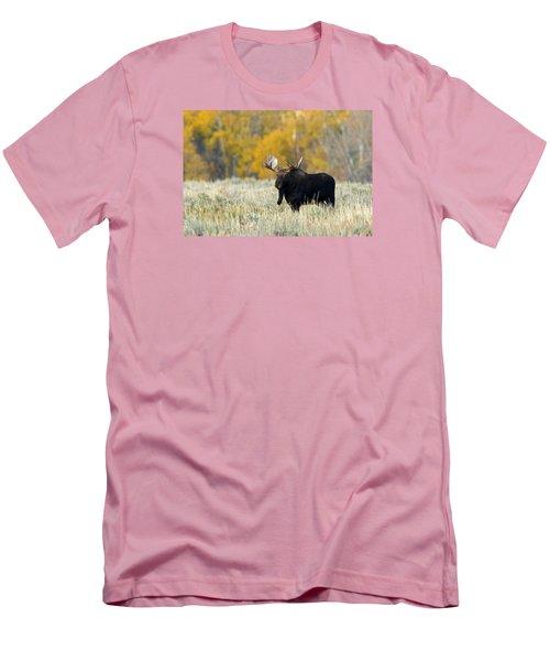 Autumn Splendor II Men's T-Shirt (Athletic Fit)