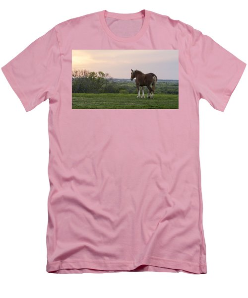 Belgian At Sunset Men's T-Shirt (Athletic Fit)