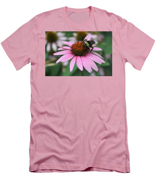 Bumble Bee On Pink Cone Flower Men's T-Shirt (Slim Fit) by Sheila Brown