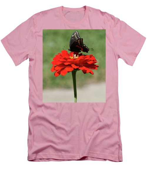 Butterfly On Red Zinnia Men's T-Shirt (Athletic Fit)
