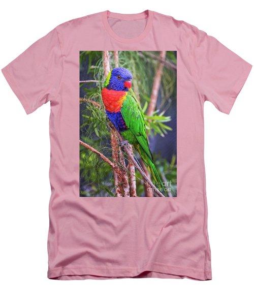 Colorful Parakeet Men's T-Shirt (Athletic Fit)