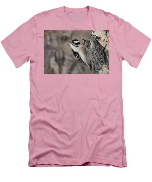 Female Downey Woodpecker Men's T-Shirt (Athletic Fit)