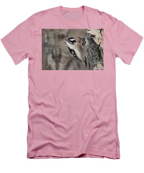 Female Downey Woodpecker Men's T-Shirt (Athletic Fit)