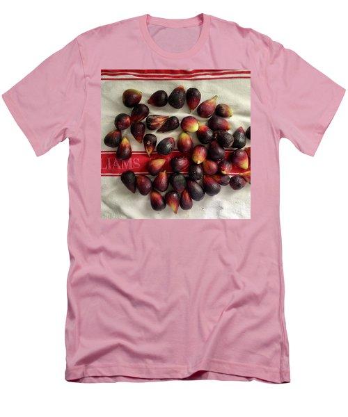 Fresh Figs Men's T-Shirt (Slim Fit) by Kim Nelson