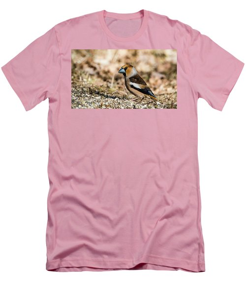 Men's T-Shirt (Slim Fit) featuring the photograph Hawfinch's Gaze by Torbjorn Swenelius