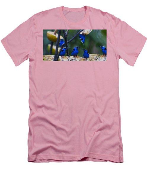 Honeycreeper Men's T-Shirt (Slim Fit) by Betsy Knapp