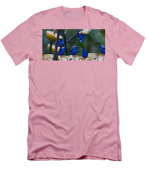 Honeycreeper Men's T-Shirt (Athletic Fit)