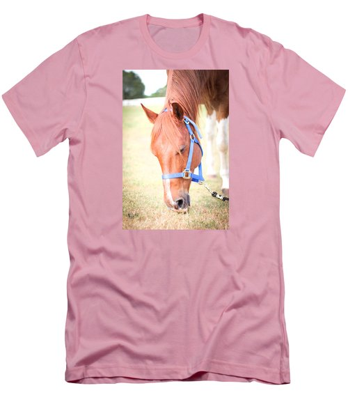 Men's T-Shirt (Slim Fit) featuring the photograph Horse Eating In A Pasture In Vibrant Color by Kelly Hazel