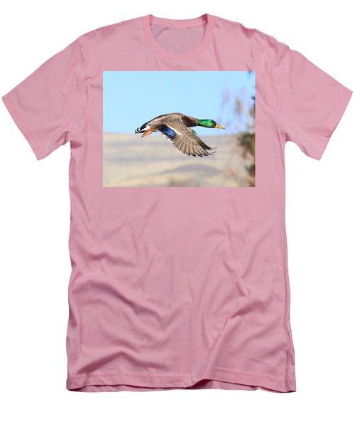 Mallard Flying Over Men's T-Shirt (Slim Fit) by Lynn Hopwood