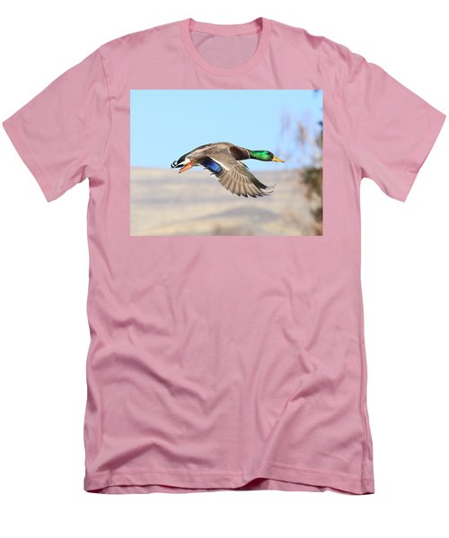 Mallard Flying Over Men's T-Shirt (Athletic Fit)
