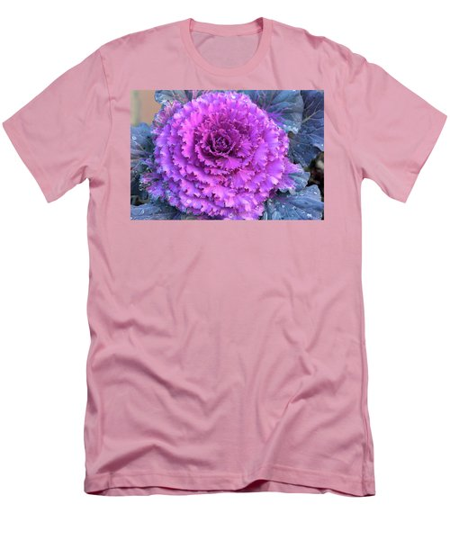 Ornamental Cabbage Closeup Men's T-Shirt (Athletic Fit)