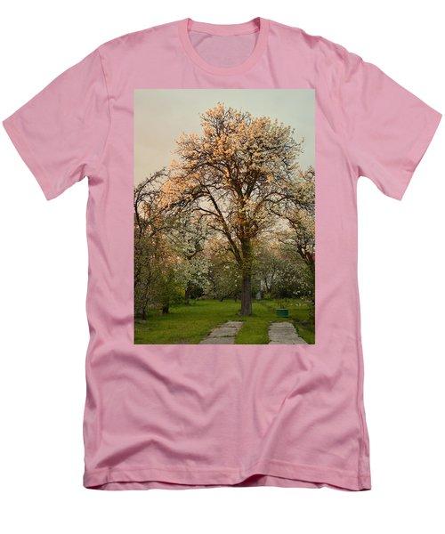 Pear Spring Sunrise Men's T-Shirt (Slim Fit) by Henryk Gorecki