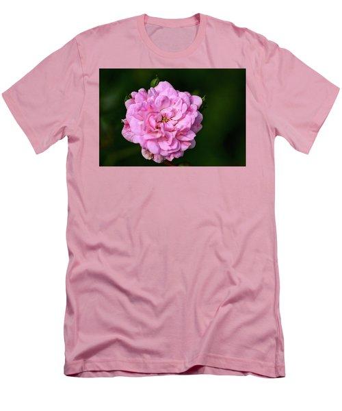 Pink Rose Petals Men's T-Shirt (Athletic Fit)