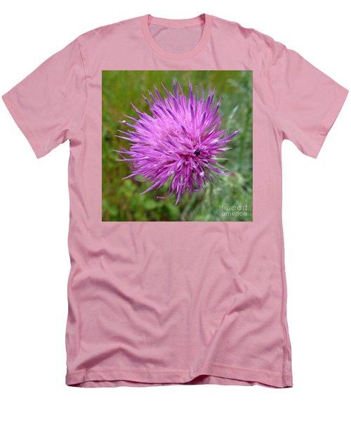 Purple Dandelions 2 Men's T-Shirt (Athletic Fit)