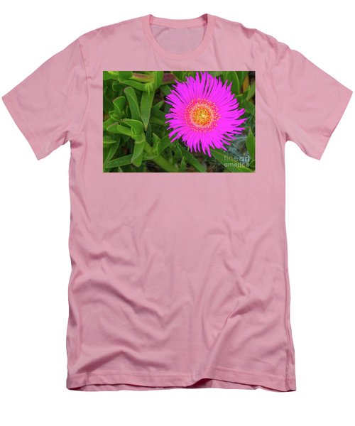 Sally-my-handsome Succulent Flower - Carpobrotus Acinaciformis Men's T-Shirt (Slim Fit) by Jivko Nakev