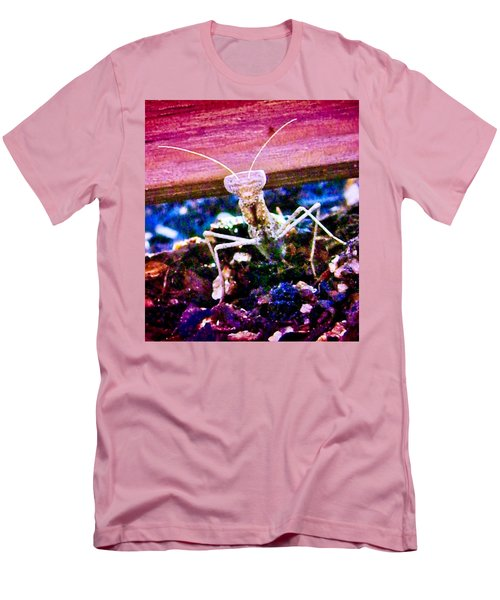 Sonoran Desert Ground Mantis Men's T-Shirt (Athletic Fit)