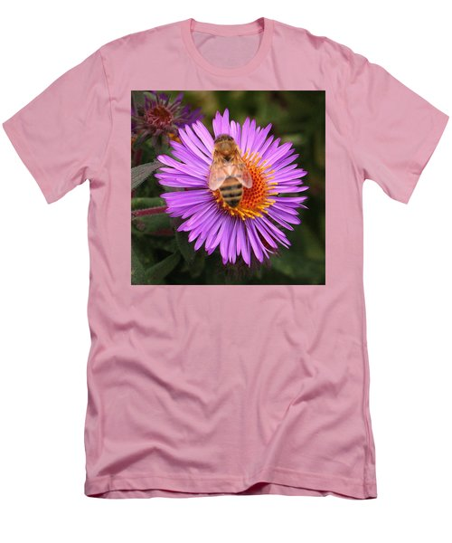 The Aster And The Bee Men's T-Shirt (Athletic Fit)