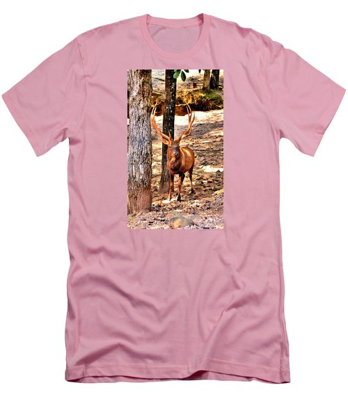 Watchfull Stag Men's T-Shirt (Slim Fit) by James Potts