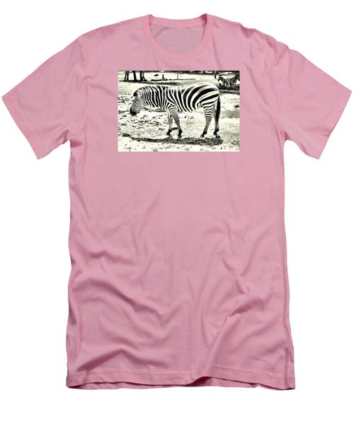Zebra In Black And White Men's T-Shirt (Slim Fit) by James Potts