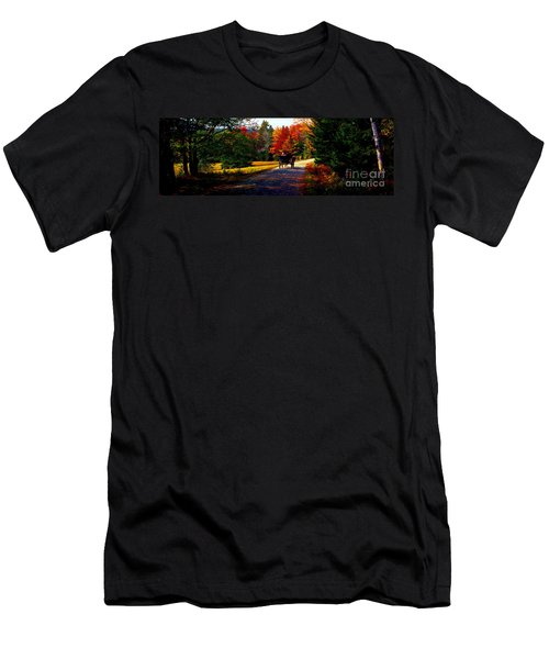 Men's T-Shirt (Slim Fit) featuring the photograph  Acadia National Park Carriage Trail Fall  by Tom Jelen