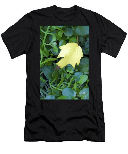 Fallen Yellow Leaf Men's T-Shirt (Athletic Fit)