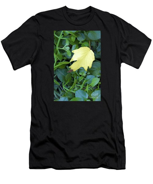 Fallen Yellow Leaf Men's T-Shirt (Athletic Fit)