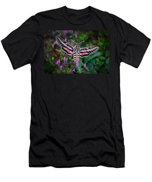 Hummingbird Moth Print Men's T-Shirt (Athletic Fit)