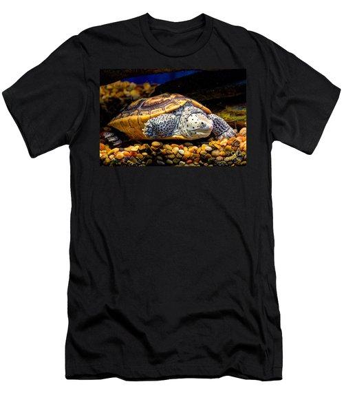 Sea Turtle Men's T-Shirt (Slim Fit) by Savannah Gibbs