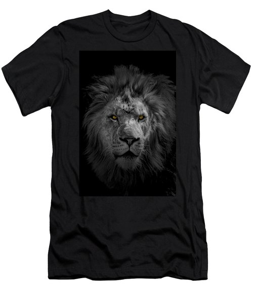African Lion Men's T-Shirt (Athletic Fit)