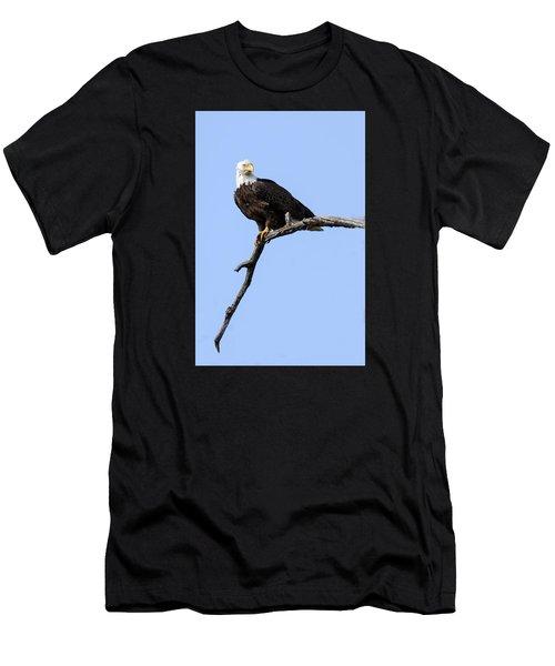 Bald Eagle 7 Men's T-Shirt (Athletic Fit)