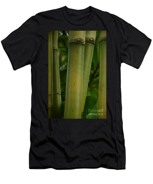 Men's T-Shirt (Slim Fit) featuring the photograph Bamboo II by Robert Meanor