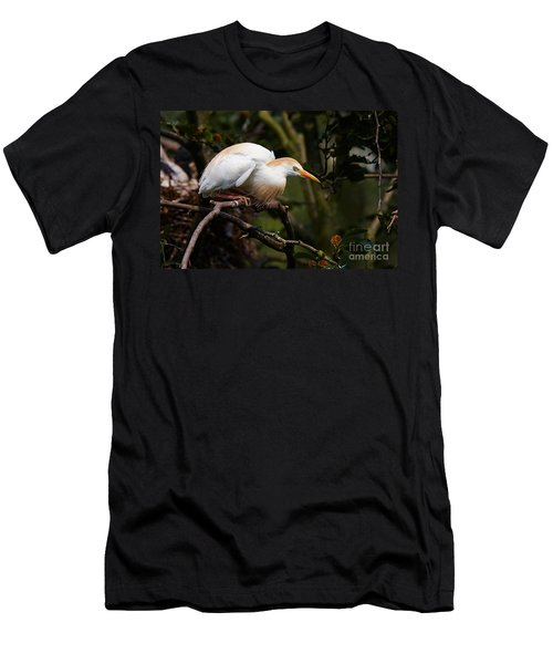 Cattle Egret In A Tree Men's T-Shirt (Athletic Fit)
