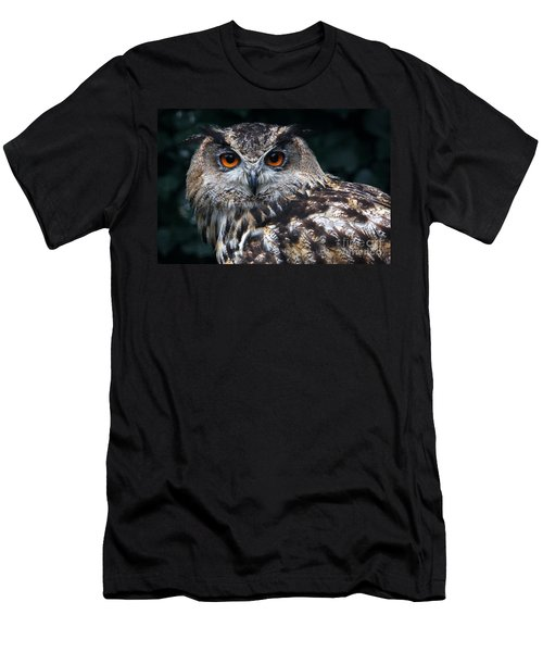 European Eagle Owl Men's T-Shirt (Athletic Fit)