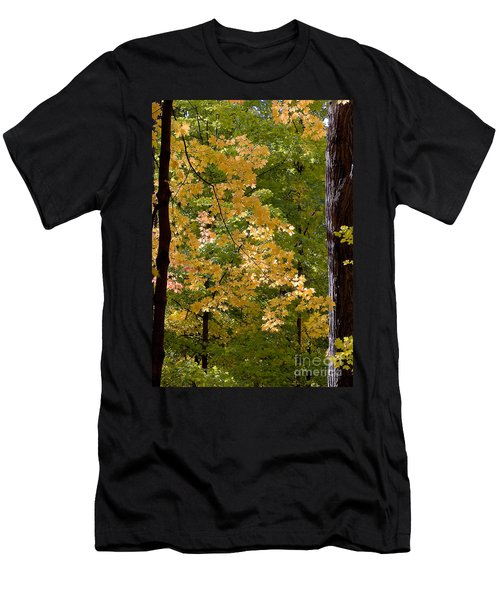 Fall Maples Men's T-Shirt (Athletic Fit)