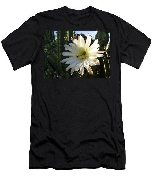 Flowering Cactus 1 Men's T-Shirt (Slim Fit) by Mariusz Kula