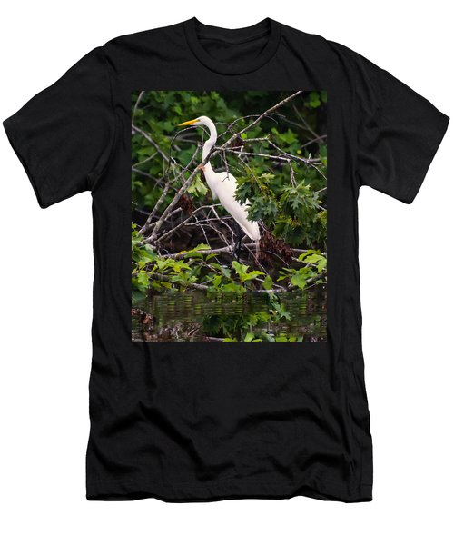 Great White Egret Men's T-Shirt (Slim Fit) by Chris Flees