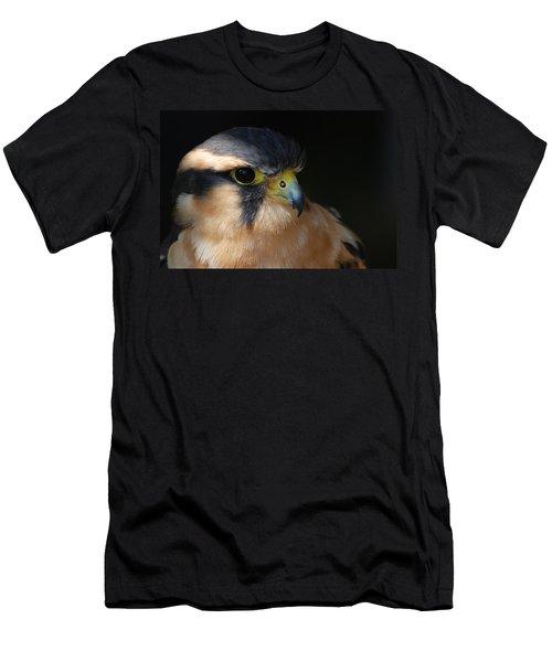 Kestrel Falcon Men's T-Shirt (Slim Fit) by Amy Porter