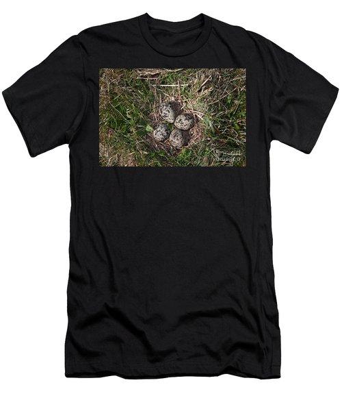Lapwing Nest Men's T-Shirt (Athletic Fit)