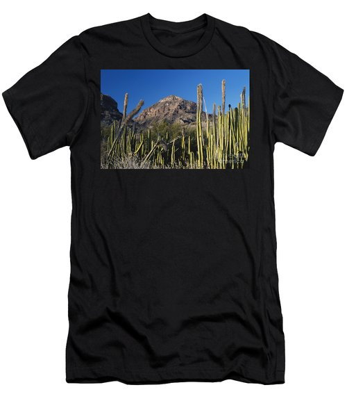 Old Man Cactus Men's T-Shirt (Athletic Fit)