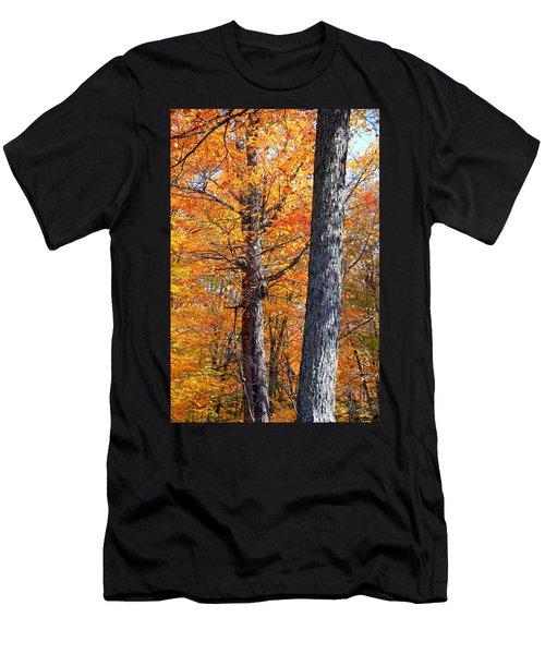 Ontario October Men's T-Shirt (Athletic Fit)