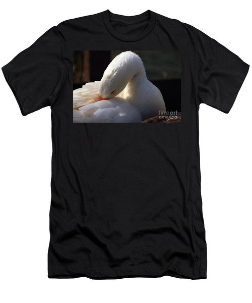 Preening Goose Men's T-Shirt (Athletic Fit)
