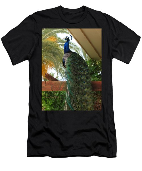 Proud Peacock Men's T-Shirt (Slim Fit) by Laurel Powell