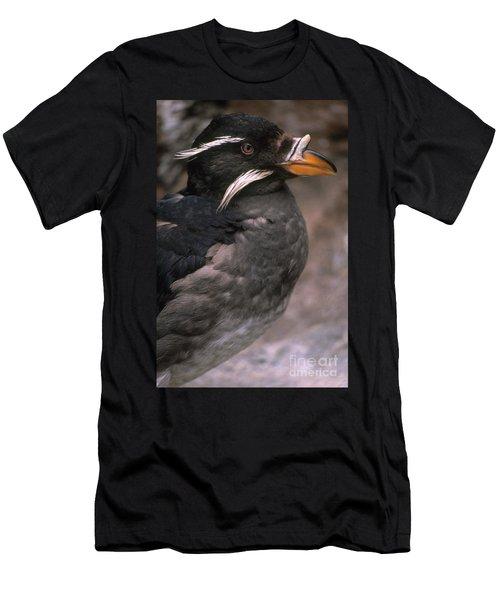 Rhinoceros Auklet Men's T-Shirt (Athletic Fit)