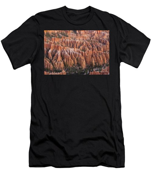 Sandstone Hoodoos In Bryce Canyon  Men's T-Shirt (Athletic Fit)