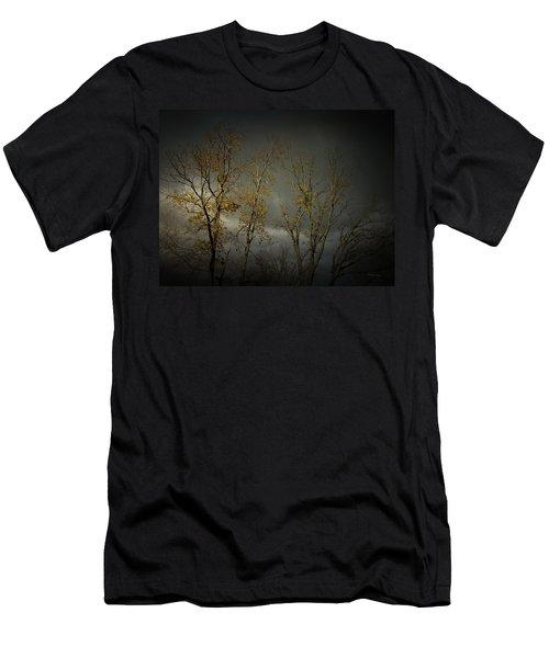 Shine 2 Men's T-Shirt (Slim Fit) by Cynthia Lassiter