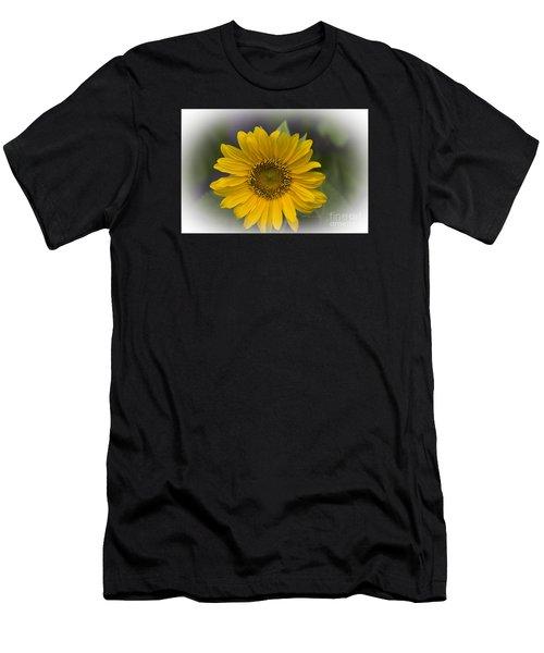 Sunflower Vr. 'dwarf Sunspot ' Men's T-Shirt (Athletic Fit)