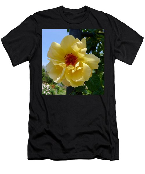 Sunny Yellow Rose Men's T-Shirt (Athletic Fit)
