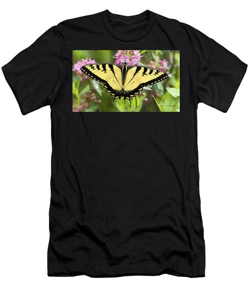 Tiger Swallowtail Butterfly On Milkweed Flowers Men's T-Shirt (Athletic Fit)