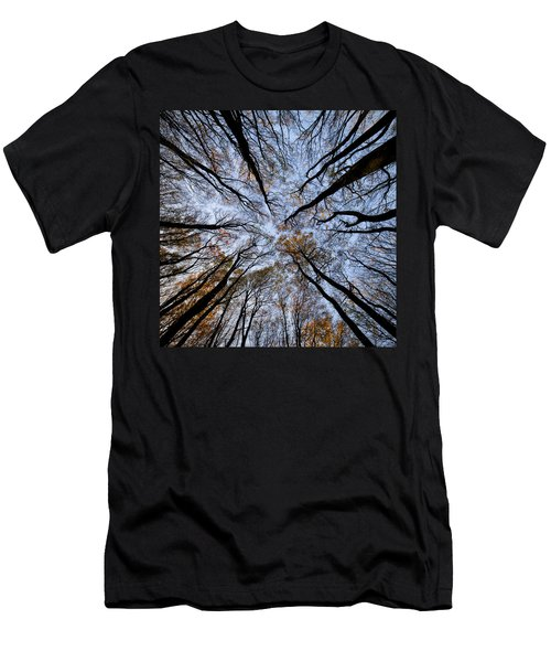Tall Trees Men's T-Shirt (Slim Fit) by Mike Santis